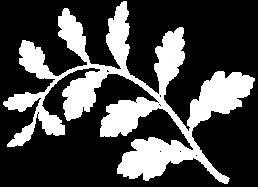 oak leaves graphic